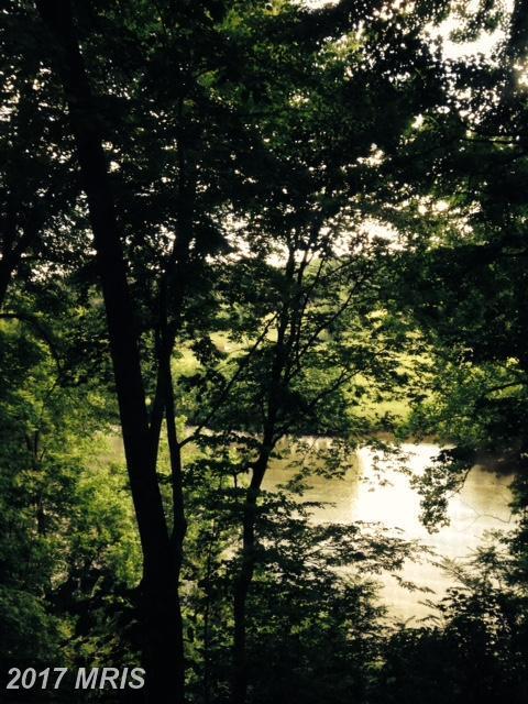 1549 Artz Road, Woodstock, VA 22664 (#SH10024961) :: Pearson Smith Realty