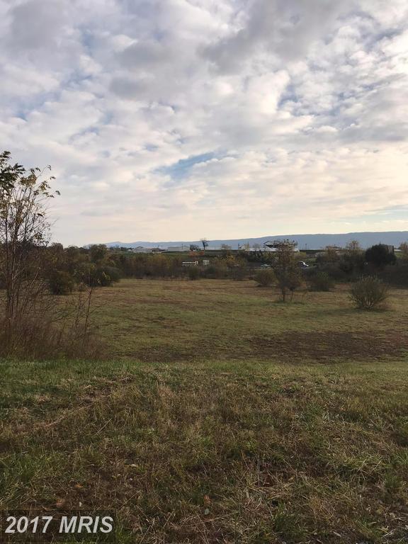 Woodstock Commons Dr., Woodstock, VA 22664 (#SH10101733) :: Pearson Smith Realty