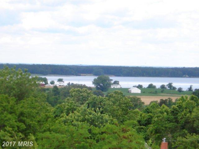 Lot 8 Upland Dr. Drive, Bushwood, MD 20618 (#SM10026742) :: Pearson Smith Realty