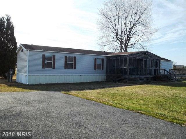 17357 Goddards Lane, Piney Point, MD 20674 (#SM10348848) :: Keller Williams Preferred Properties