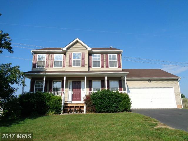 12014 Setter Drive, Fredericksburg, VA 22407 (#SP10003476) :: Pearson Smith Realty