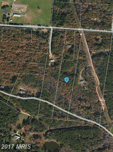 14204 Cedar Plantation Road, Spotsylvania, VA 22551 (#SP10041944) :: LoCoMusings