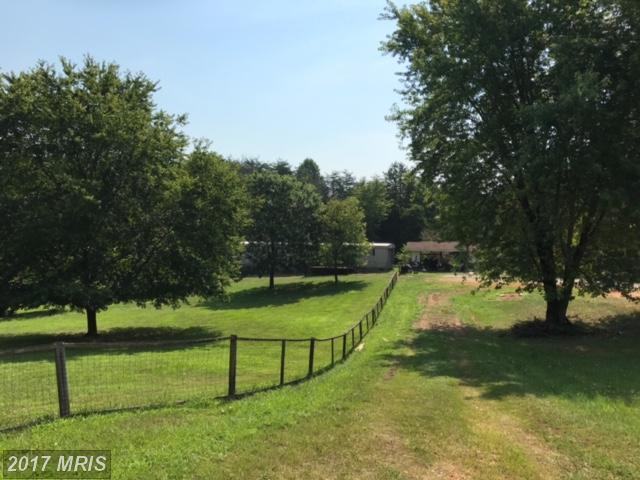 8901 Fox Run Drive, Spotsylvania, VA 22551 (#SP10043469) :: LoCoMusings