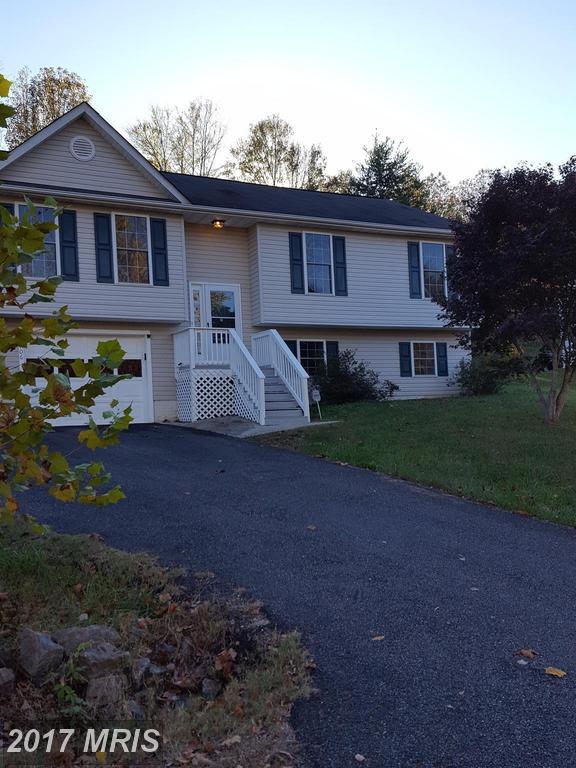 11706 Enchanted Woods Way, Fredericksburg, VA 22407 (#SP10097545) :: LoCoMusings