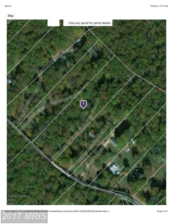 9721 Peppertree Road, Spotsylvania, VA 22553 (#SP10108758) :: Green Tree Realty