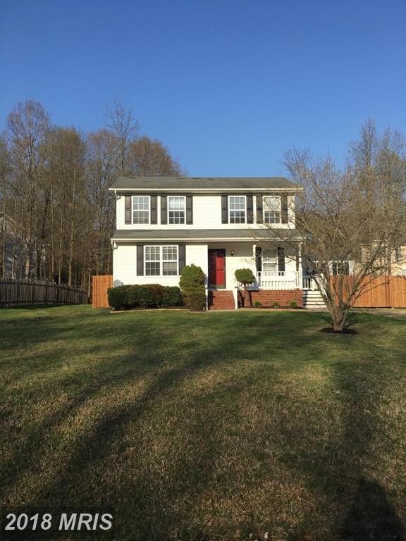 11909 Katelyn Drive, Fredericksburg, VA 22407 (#SP10217102) :: Green Tree Realty