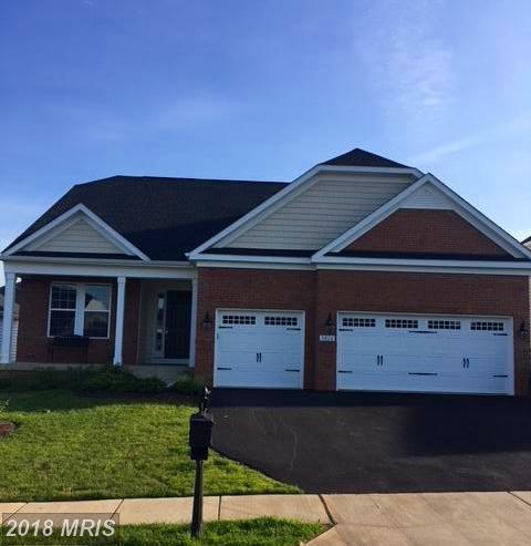 5826 New Berne Road, Fredericksburg, VA 22407 (#SP10274435) :: RE/MAX Gateway