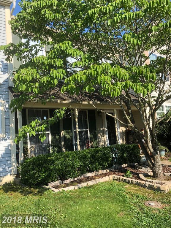 5109 Dominion Drive, Fredericksburg, VA 22407 (#SP10299951) :: Blackwell Real Estate