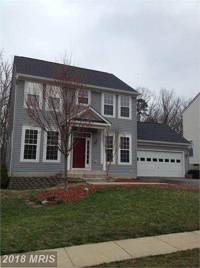 6117 Hot Spring Lane, Fredericksburg, VA 22407 (MLS #SP10300653) :: Explore Realty Group