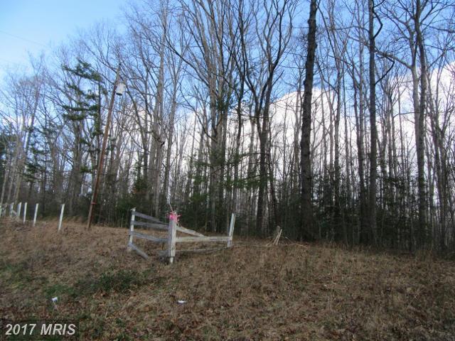 7113 Block House Road, Spotsylvania, VA 22551 (#SP9877972) :: LoCoMusings