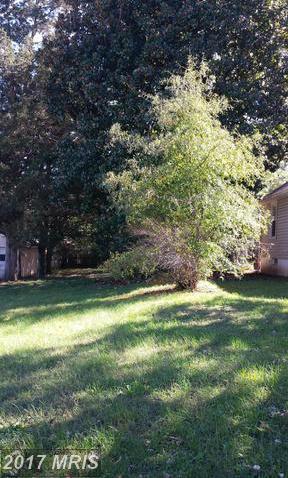 205 Mansfield Street, Fredericksburg, VA 22408 (#SP9881561) :: LoCoMusings