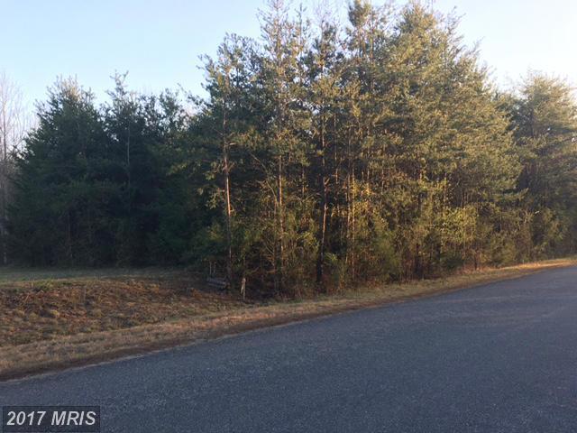 3705 Morning Glory Drive, Bumpass, VA 23024 (#SP9905422) :: LoCoMusings