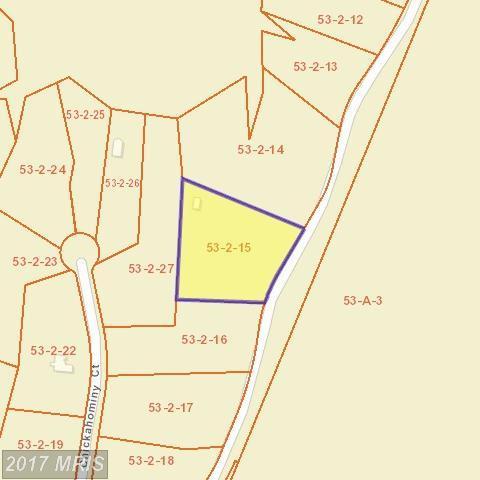 17121 Arrow Point Drive, Orange, VA 22960 (#SP9952952) :: LoCoMusings