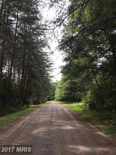 11320 Chancellor Meadows, Locust Grove, VA 22508 (#SP9978883) :: LoCoMusings