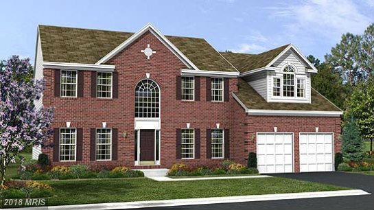0 Colmans Mill Drive, Fredericksburg, VA 22405 (#ST10226843) :: Circadian Realty Group