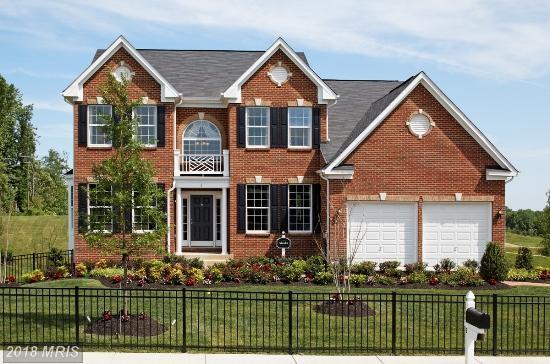 3 Perth Drive, Fredericksburg, VA 22405 (#ST10253622) :: Circadian Realty Group