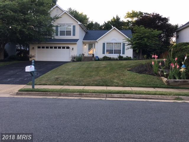 4 Harry Court, Stafford, VA 22554 (#ST10305449) :: Green Tree Realty