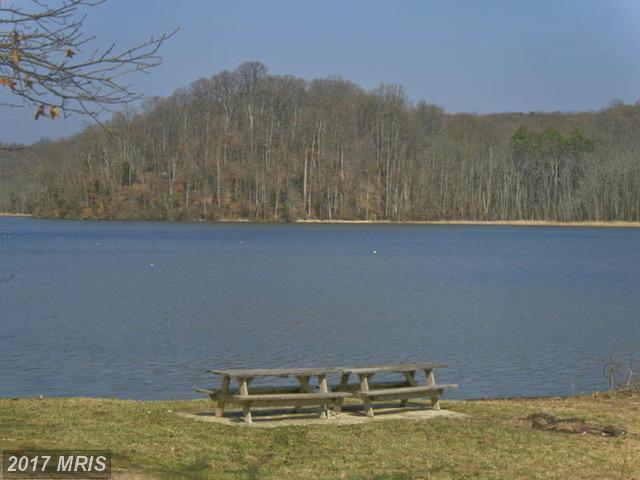 Hawks Nest, Fredericksburg, VA 22405 (#ST9841321) :: LoCoMusings