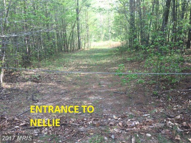 25 Nellie Lane, Fredericksburg, VA 22406 (#ST9910252) :: LoCoMusings