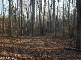 0 New Hope Church Road, Fredericksburg, VA 22405 (#ST9977149) :: Pearson Smith Realty