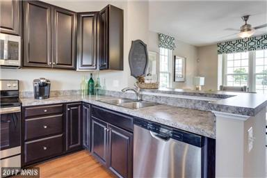 105 Watersprite Way, Fredericksburg, VA 22405 (#ST9990355) :: Coldwell Banker Elite