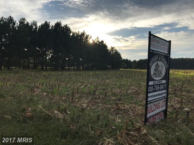 Mcdaniel Farm Lane, Mcdaniel, MD 21647 (#TA10070722) :: LoCoMusings