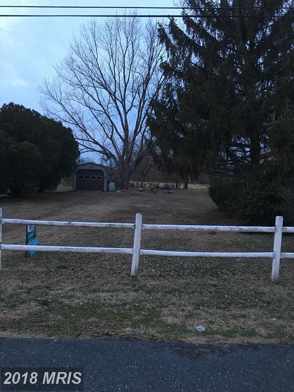 Island Creek Neck Road, Trappe, MD 21673 (#TA10161478) :: The Bob & Ronna Group