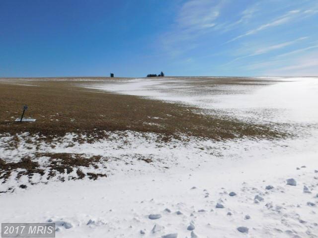 55 View Ridge, Davis, WV 26260 (#TU9867229) :: Pearson Smith Realty