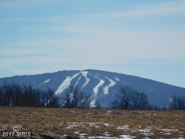 58 View Ridge, Davis, WV 26260 (#TU9867262) :: LoCoMusings