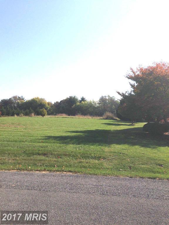 9747 Redamar Drive, Hagerstown, MD 21740 (#WA9561973) :: LoCoMusings
