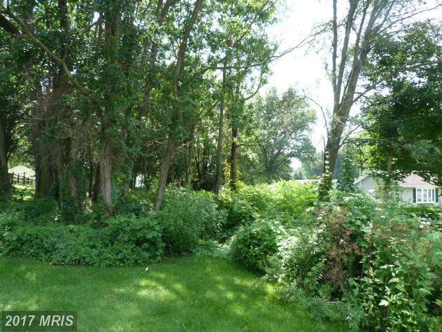 20819 Jefferson Boulevard, Smithsburg, MD 21783 (#WA9963292) :: Pearson Smith Realty