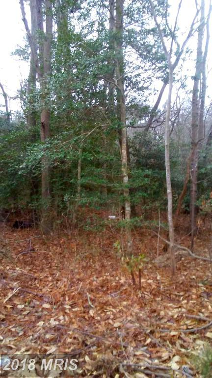 Upper Ferry Road, Eden, MD 21822 (MLS #WC10127206) :: RE/MAX Coast and Country
