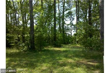 Lot 257 Armed Forces Dr., Montross, VA 22520 (#WE10066491) :: Green Tree Realty