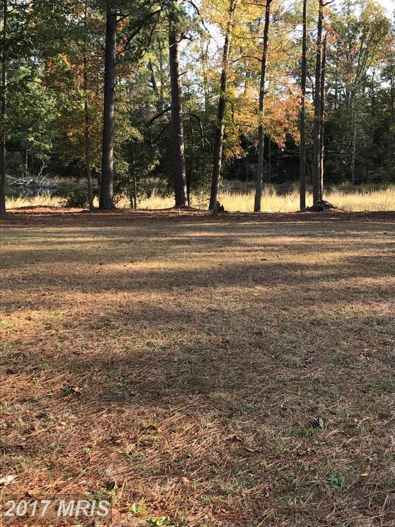 S. Glebe Rd, Montross, VA 22520 (#WE10110514) :: Green Tree Realty