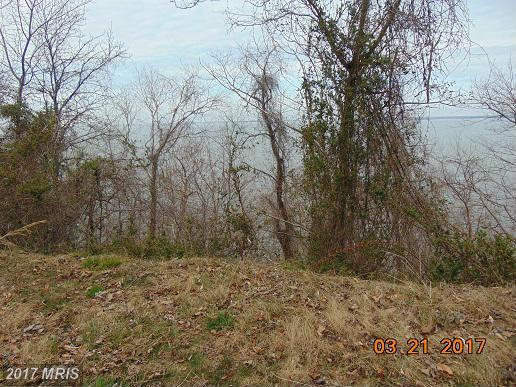 N. Independence Drive, Montross, VA 22520 (#WE9951535) :: Pearson Smith Realty