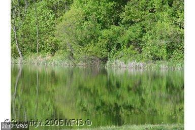 LOT 142 Venus Branch Road, Front Royal, VA 22630 (#WR10053857) :: Pearson Smith Realty