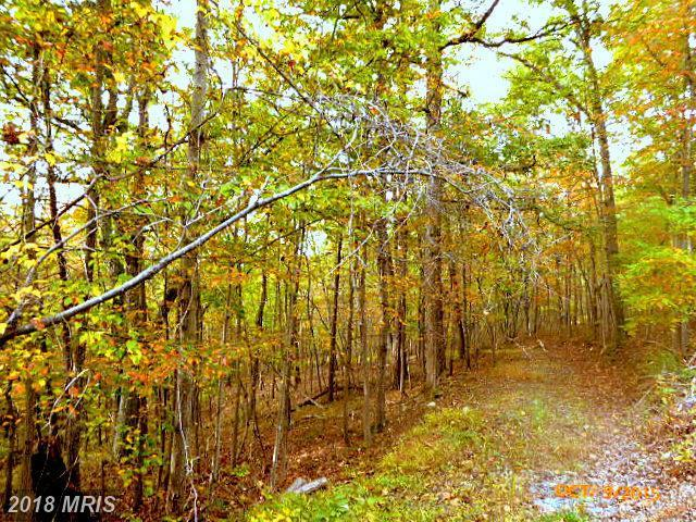 LOT 67 Brandy Road, Front Royal, VA 22630 (#WR10137020) :: RE/MAX Executives