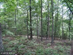 Vesey Drive, Front Royal, VA 22630 (#WR9800580) :: Pearson Smith Realty