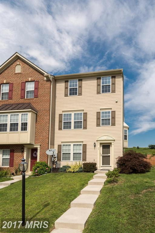 71 Forest View Terrace, Hanover, PA 17331 (#YK10025232) :: LoCoMusings