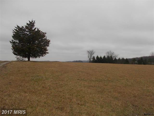 Skyview Drive, Glenville, PA 17329 (#YK9842101) :: LoCoMusings