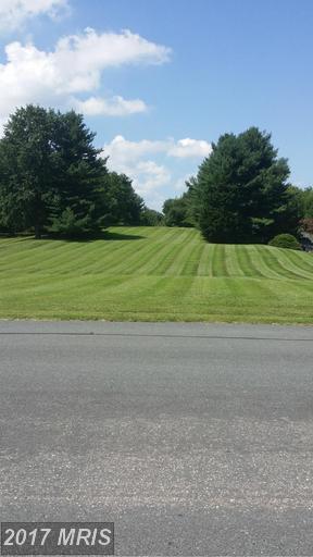 3296 Green Ash Road, Davidsonville, MD 21035 (#AA9744646) :: LoCoMusings