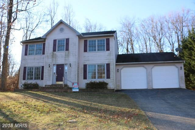 33 Mountain View Trail, Fairfield, PA 17320 (#AD10123246) :: Pearson Smith Realty