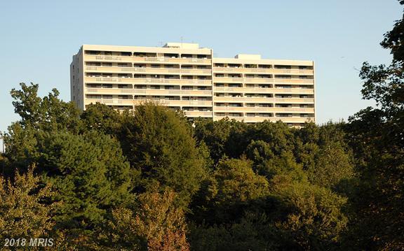 6101 Edsall Road #1607, Alexandria, VA 22304 (#AX10232957) :: Bob Lucido Team of Keller Williams Integrity