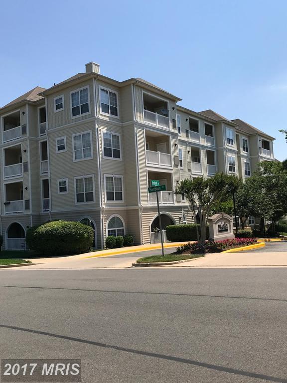 4561 Strutfield Lane #3313, Alexandria, VA 22311 (#AX9975163) :: LoCoMusings