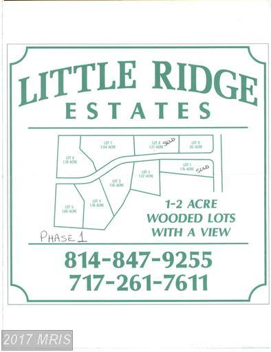 Ridge Way Drive, Everett, PA 15537 (#BD9627332) :: LoCoMusings