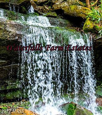 Mouth Of The Opequon, Falling Waters, WV 25419 (#BE9920189) :: LoCoMusings