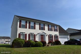 293 Tidewater Circle, Preston, MD 21655 (#CM10238150) :: RE/MAX Coast and Country