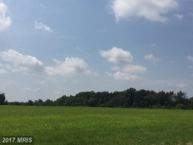 Corner Of Ruggles And Fsk Road, Taneytown, MD 21787 (#CR9996865) :: Pearson Smith Realty
