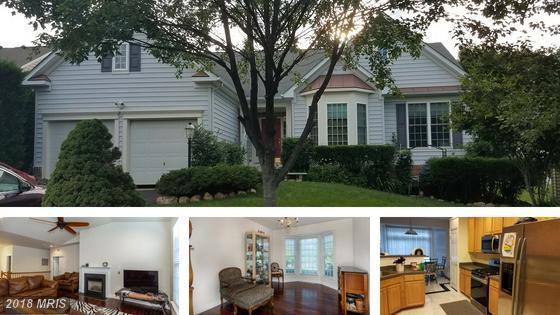 626 Pelhams Reach Drive, Culpeper, VA 22701 (MLS #CU10267412) :: Explore Realty Group