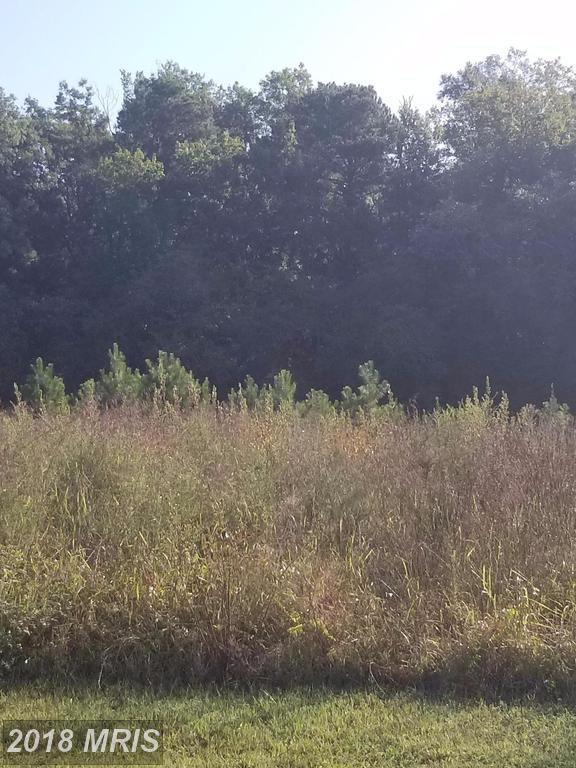 13315 Meadow Farm Rd., Hanover, VA 23069 (#CV10062771) :: Pearson Smith Realty